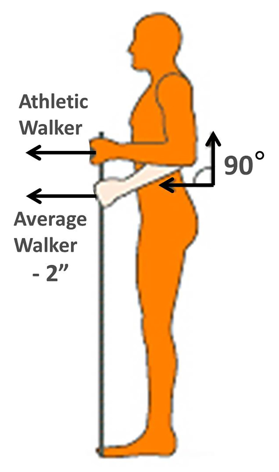 How to set up your poles height